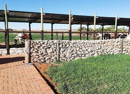 agri village view farm