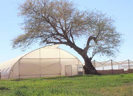 agri village view shed